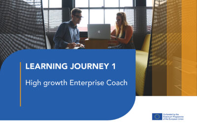 LJ 1: The High Growth Enteprise Coach
