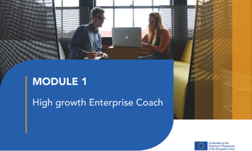 LJ1: High growth Enterprise Coach